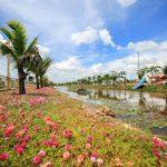 Cát Tường Phú Sinh - Long An
