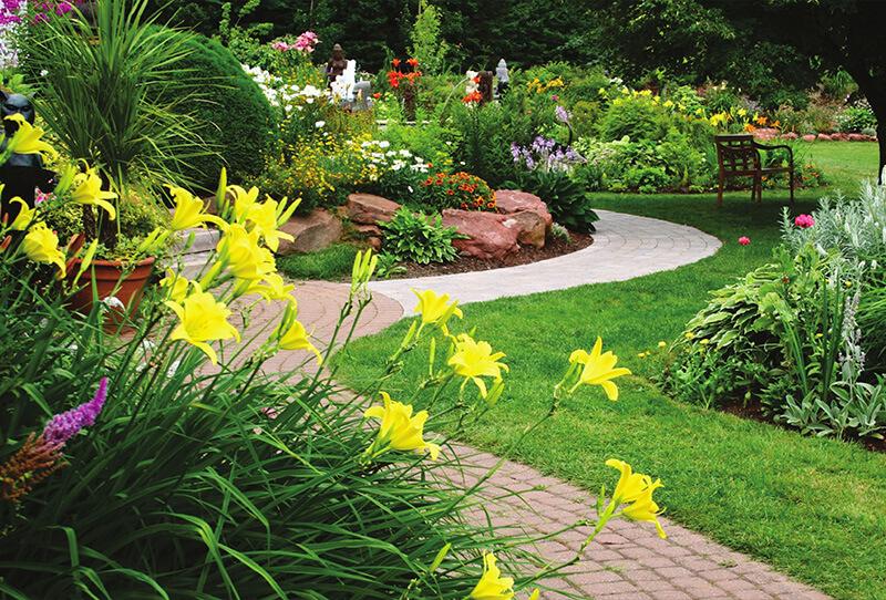 Vườn hoa khoe sắc của khu đô thị Five Star Eco City